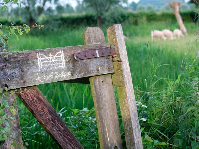 Landgoed Beekzicht- Het dorp Voorst